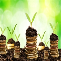 Landscaping as an Investment