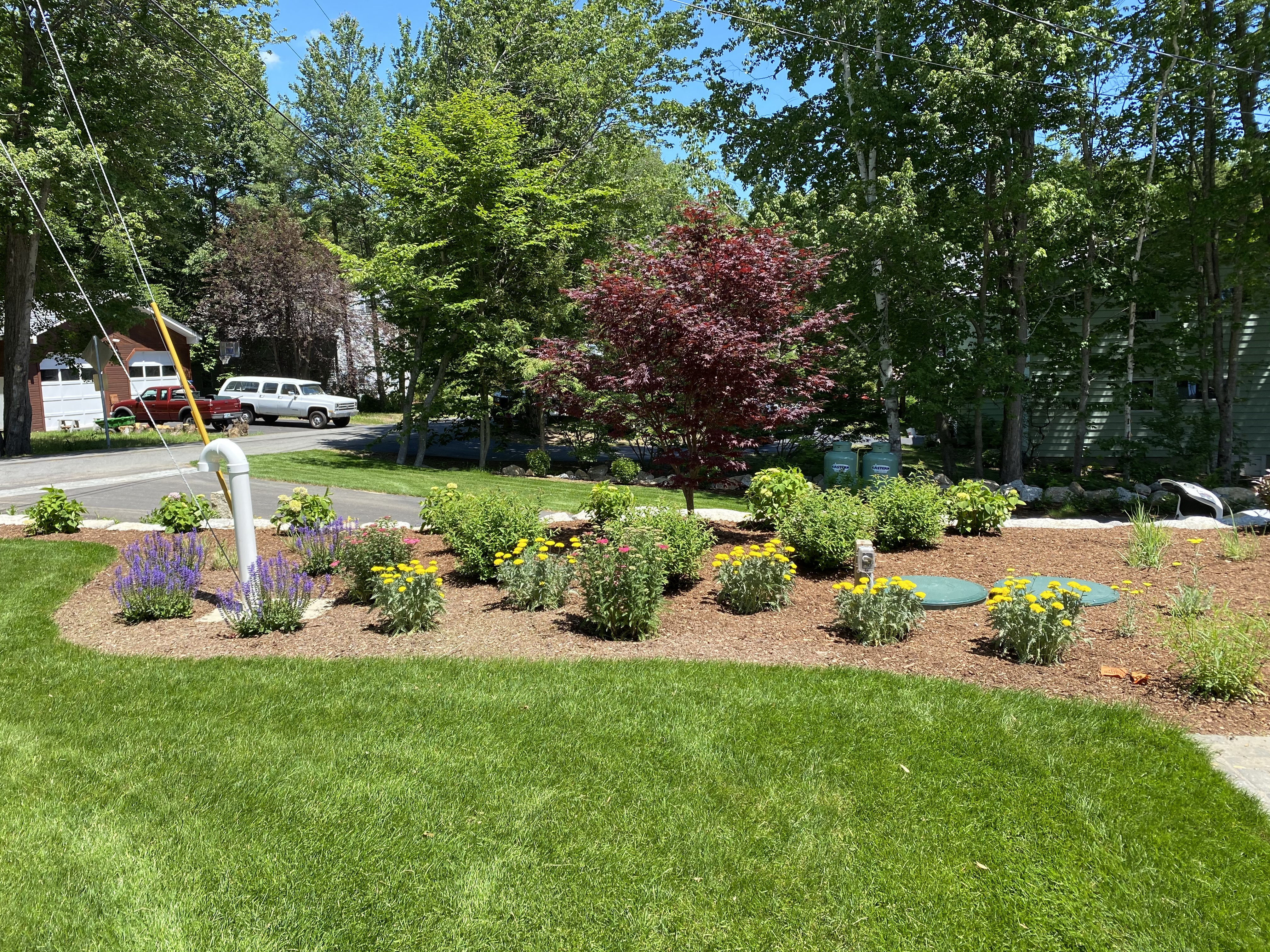 After Concealing Planting Bed